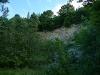 Naturschutzgebiet - ehemaliger Steinbruch