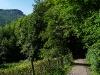 Von Honau Richtung Gießstein
