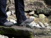 Die von Steinen eingefasste Breitenbachquelle