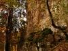 Unter dem Lauereckfels