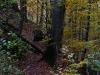 Steiler Waldpfad