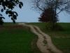 Feldweg zum Alenberg