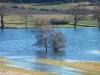 Märzenbronnen - ein Schmelzwasserteich