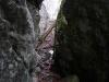 In einem Felsspalt - wo die Alb bröckelt