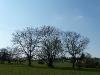 Naturschutzgebiet Schönberg