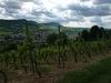 Deutschlands höchster Weinberg