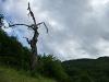 Im Reissenbachtal