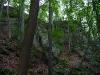 Bannwald Pferch - Felsenlandschaft durch Bergsturz