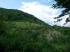 Felswand im Naturschutzgebiet
