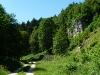 Felsen im Tiefental