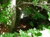 Höhle in einer Senke am Gräbelesberg