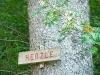 Herzle-Weg