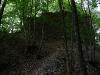 Ruine Sperberseck im Wald