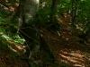 Serpentinenweg am Albtrauf