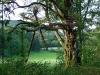 Im Naturschutzgebiet Gereuthau