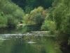 Noch ist Wasser im Flussbett der Donau