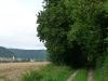 Blick und Weg Richtung Möhringen