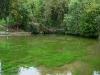 Die Aachquelle in Aach - hier kommt das Wasser wieder an die Oberfläche