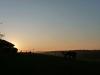 Sonnenuntergang in Dächingen
