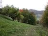 Naturschutzgebiet Eichhalde