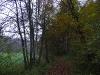 Wald- und Wiesenweg im Lonetal