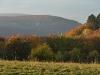 Blick über die Wiesen zur Ruine Hohenwittlingen