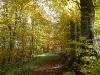 Goldener Oktober auf dem HW7
