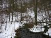 Quelle des Brühlbachs