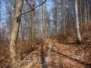 Auf dem Eninger Burgenweg hinauf zum Mädlesfels