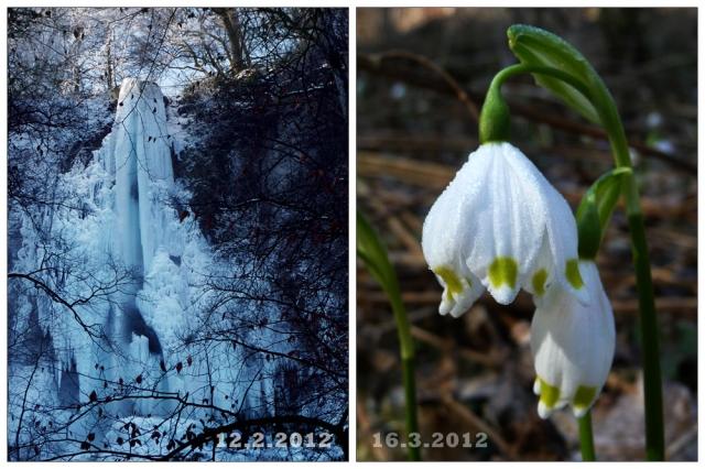 Wandlung der Natur von Februar zu März