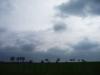 Baumreihe unter Wolken