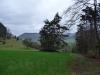 Wald und Wiese bei Talheim