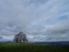 Blick vom Jusi ins Albvorland