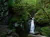 Wasserfall und Leiter in der Lotenbachklamm