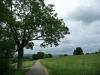 Fahrsträßchen zwischen Schwende und Rietheim