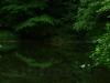 Kohlteichweiher