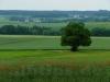 Oberhalb des Warmtals zwischen Langenenslingen und Emerfeld