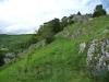 Felsenheide unterhalb der Ruine Hohenschelklingen