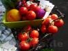neigschmeckt Markt 2012 (Reutlingen)