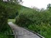 Brücke über das Feuchtgebiet der Erpf
