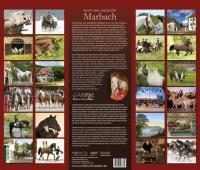 Pferdekalender Gestüt Marbach von Gabriele Boiselle