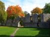 Ruine Honberg im Goldenen Oktober