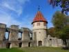 Ruine Honberg