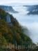 Kalkfelsen im Donautal