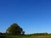 Stahlblauer Himmel über der Albhochfläche