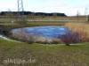 Regenwasserbiotop