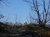 Schloss Lichtenstein kommt in Sicht