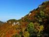 Buntes Herbstlaub umrahmt die Traifelbergfelsen
