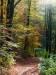Herbsteindruck auf dem Weg zur Falkensteiner Höhle