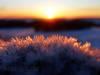 Eiskristalle von der Sonne beschienen